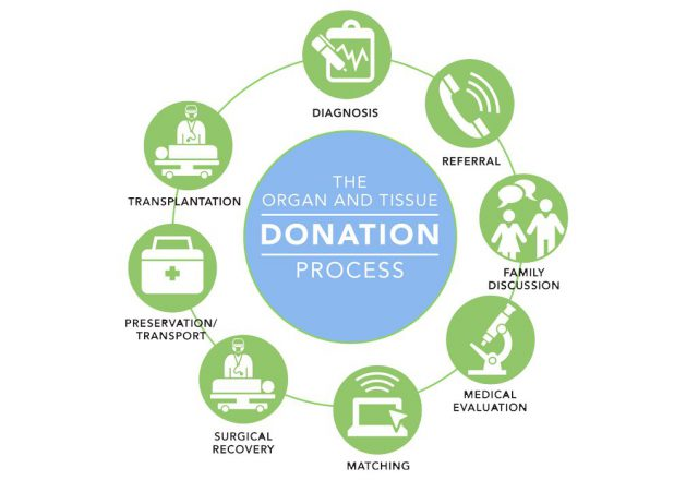 Organ Donation Process